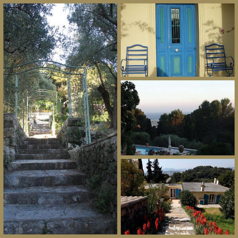 Olivegarden-collage